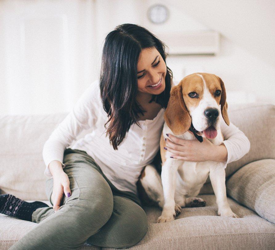 addestramento cani milano dog trainer