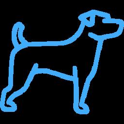 addestramento cani milano educazione adulti
